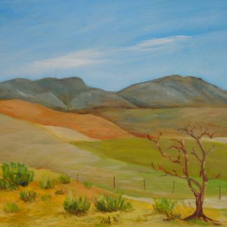 Dead tree, Stanford, Oil Painting, art by Bruce, Art for Sale