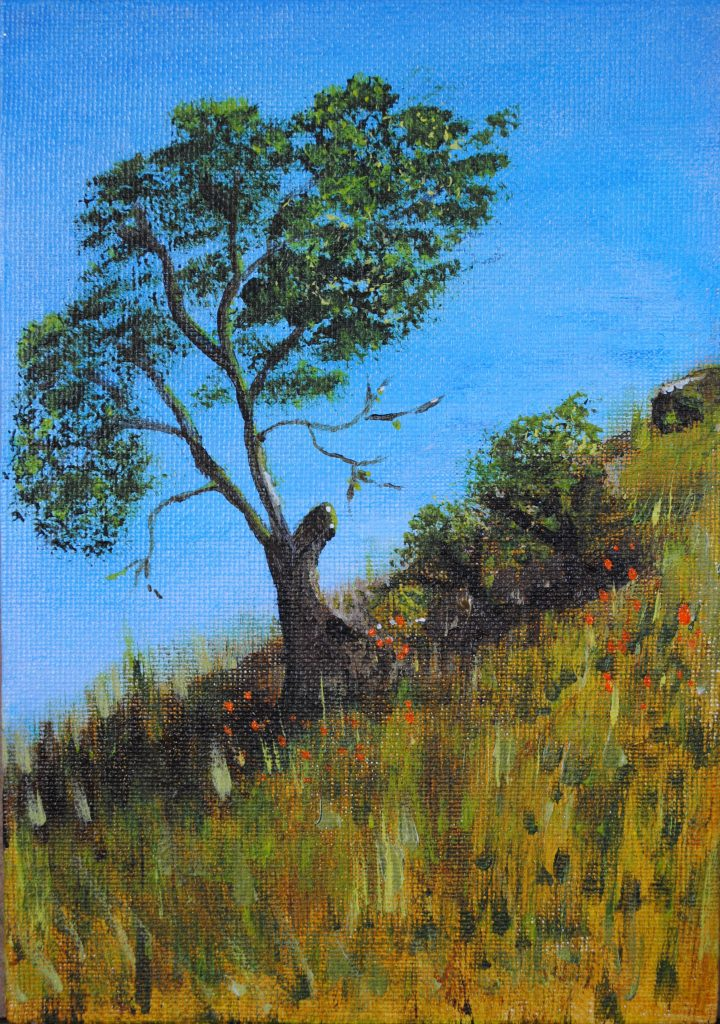 Tree On a Hill, One Tree, Art By Bruce, Art For Sale, Acrylic painting by Bruce
